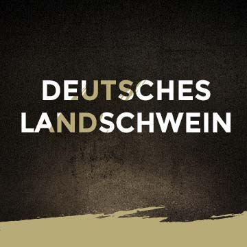 Deutsches Landschwein